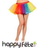 Jupon en tulle multicolore de 25cm