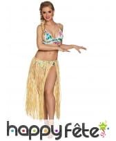 Jupe longue hawaïenne en raphia pour adulte, image 1