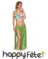Jupe longue hawaïenne en raphia pour adulte, image 3