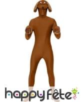 Kit chien brun, image 1
