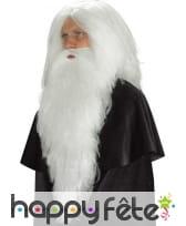 Longue barbe blanche de 65cm, image 1