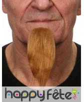 Longue barbichette blonde