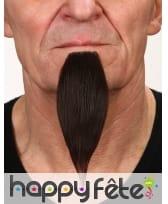 Longue barbichette brune