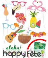 Lot de 10 photobooth style hawaïen