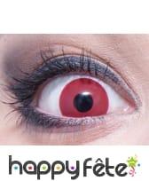 Lentilles fond rouge, image 1