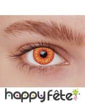 Lentilles feu UV, image 2