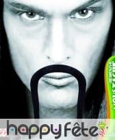 Longues moustaches de samourai