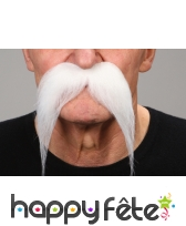 Longues moustaches tombantes blanches