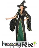 Longue robe verte et noire de sorcière