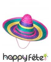 Large sombrero, image 1