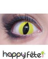 Lentilles vertes pupille de reptile, image 2