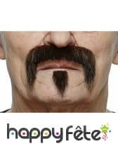 Moustache barbiche brune de Western