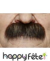 Moustaches brosse brunes
