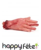 Main coupée en mousse