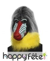 Masque de babouin intégral