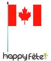 Mini drapeau sur hampe de 9.5 x 16 cm, image 11