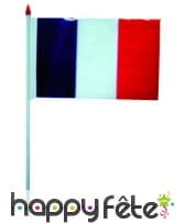Mini drapeau sur hampe de 9.5 x 16 cm, image 27
