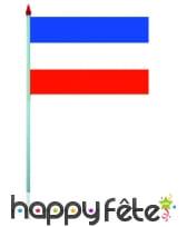Mini drapeau sur hampe de 9.5 x 16 cm, image 64