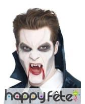 Maquillage vampire gris noir blanc
