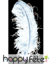 Plume autruche blanche extra 50 cm
