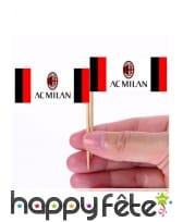 Pics apéritifs Milan de 6,5 cm, par 24
