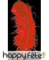 Plume autruche rouge extra 50 cm