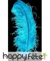 Plume autruche turquoise extra 50 cm