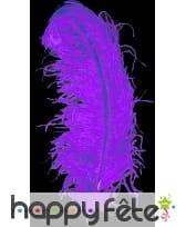 Plume autruche violette extra 50 cm