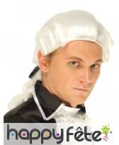 Perruque blanche de marquis pour homme, image 1