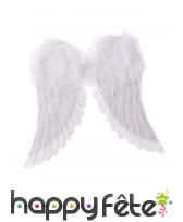 Paire d'ailes d'ange blanches, 42 x 46 cm