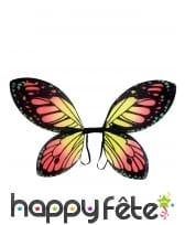 Paire d'ailes de papillon coloré pour enfant