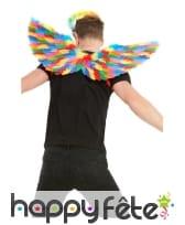 Paire d'ailes GayPride avec plumes, 80cm, image 1