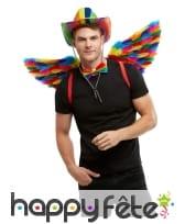 Paire d'ailes GayPride avec plumes, 80cm