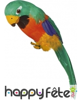 Perroquet d'épaule décoratif et multicolore, 38cm, image 2