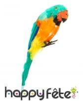 Perroquet d'épaule décoratif et multicolore, 38cm