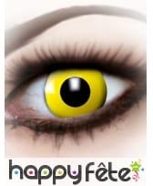 Paire de lentilles yeux jaunes