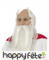 Perruque de Panoramix avec barbe et moustache, image 1