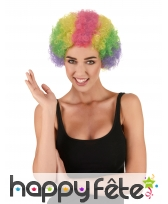 Perruque multicolore afro de clown pour adulte