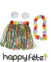 Pagne mi-long, collier et soutien-gorge hawaïen, image 1