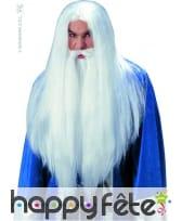 Perruque sorcier merlin avec barbe
