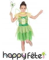 Robe de fée verte pour enfant