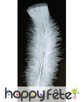 Sachet 100 plumes blanches pied plat 15 cm