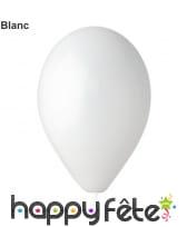 Sachet de 12 ballons standards de 30cm, image 1