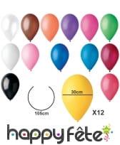 Sachet de 12 ballons standards de 30cm