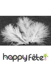 Sachet de 20 plumes décoratives, image 1