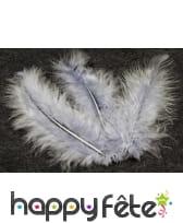 Sachet de 20 plumes décoratives, image 4