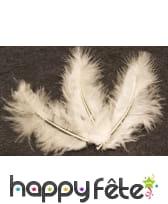 Sachet de 20 plumes décoratives, image 5