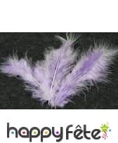 Sachet de 20 plumes décoratives, image 9