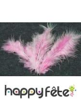 Sachet de 20 plumes décoratives, image 11