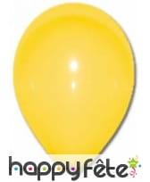 Sachet de 24 ballons de 25cm, image 5
